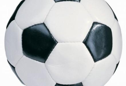 Grad bramek w Bogucinie