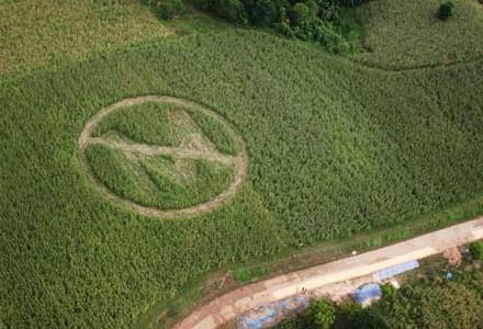 Rolnicy zalewają pola trucizną, by pozbyć się super-chwastów Monsanto