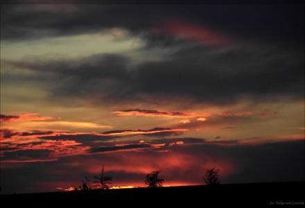 Piotrowice Wielkie w wakacyjnej odsłonie – [galeria zdjęć]