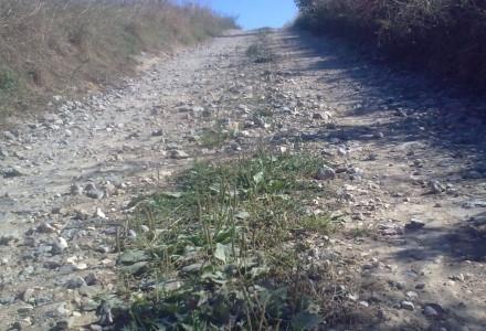 Pełna wybojów droga z Piotrowic Wielkich do Pociechy