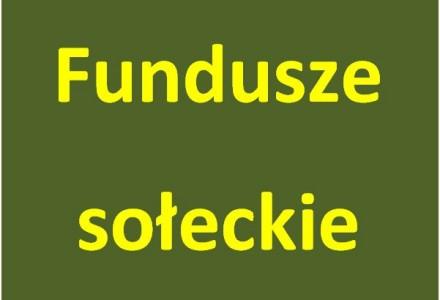 Wola Przybysławska przeznacza fundusz sołecki na oświetlenie drogowe na Rafie