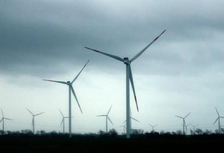 Niemcy przeciwko wiatrakowemu szaleństwu: 343 organizacji tworzy Koalicję Siła Rozsądku