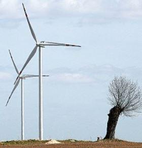 Prokuratura sprawdza, czy władze gminy Sławno złamały prawo, zawierając umowę na instalację turbin wiatrowych