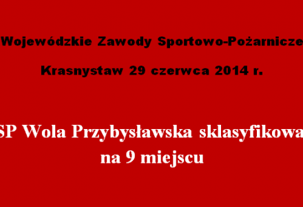 W Krasnymstawie odbyły się Wojewódzkie Zawody Sportowo-Pożarnicze