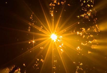 Tajemnica Eucharystii [słowo na niedzielę]