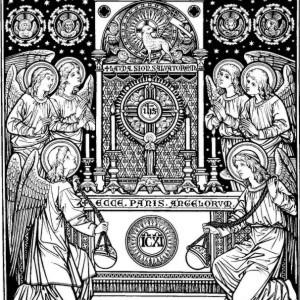 Apostolstwo eucharystyczne niewiasty [słowo na niedzielę]