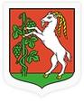Sesja Rady Miasta Lublin w internecie online
