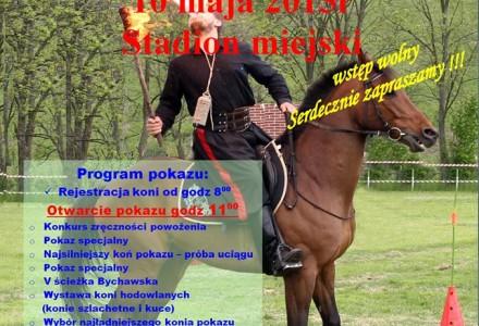 X Pokaz Wszechstronnego Wykorzystania Koni – Bychawa, 10 maja 2015 r.