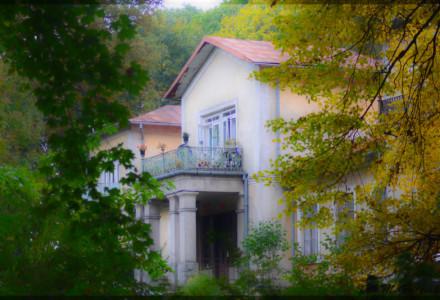 Komisja Finansów opowiedziała się za sprzedażą pałacu w Piotrowicach Wielkich
