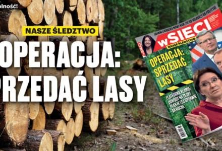 """Operacja: Sprzedać lasy. Polecamy najnowszy numer tygodnika """"wSieci""""!"""