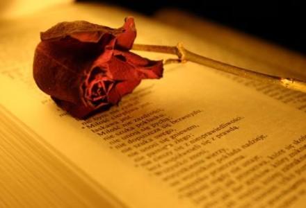 """""""Wszystko ustanie, ale miłość nigdy"""" [słowo na niedzielę]"""