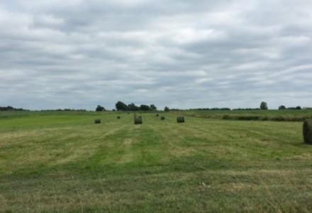 31 marca 2016 r. – Sejm przyjął ustawę o obrocie gruntami rolnymi. Sprzedaż ziemi z zasobów Skarbu Państwa wstrzymana na 5 lat