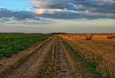 Skończyła się spekulacja ziemią rolną i galopującym wzrostem jej cen