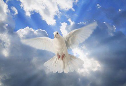 Zesłanie Ducha Świętego [słowo na niedzielę]