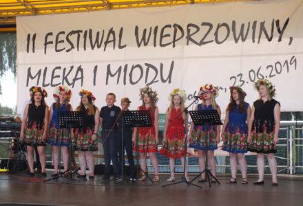 II Festiwal wieprzowiny, mleka i miodu. Bogucin 2019 [zdjęcia]