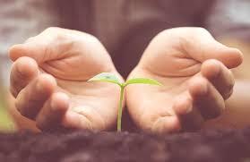 """""""Stanięcie w prawdzie o naszej kruchości i niesamowystarczalności otwiera drogę ku odnowie całego naszego życia."""" [słowo na niedzielę]"""